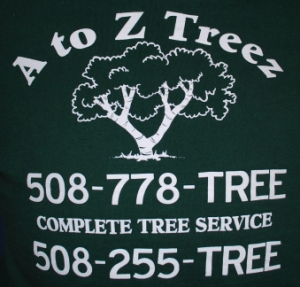 Cape Cod Tree Services